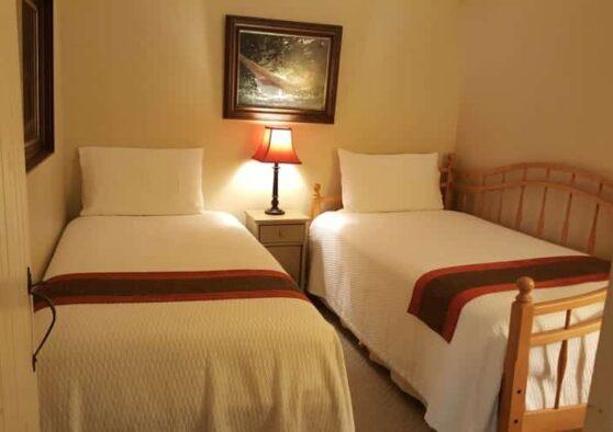 Birch Retreat bedroom with twin beds and lamp inbetween